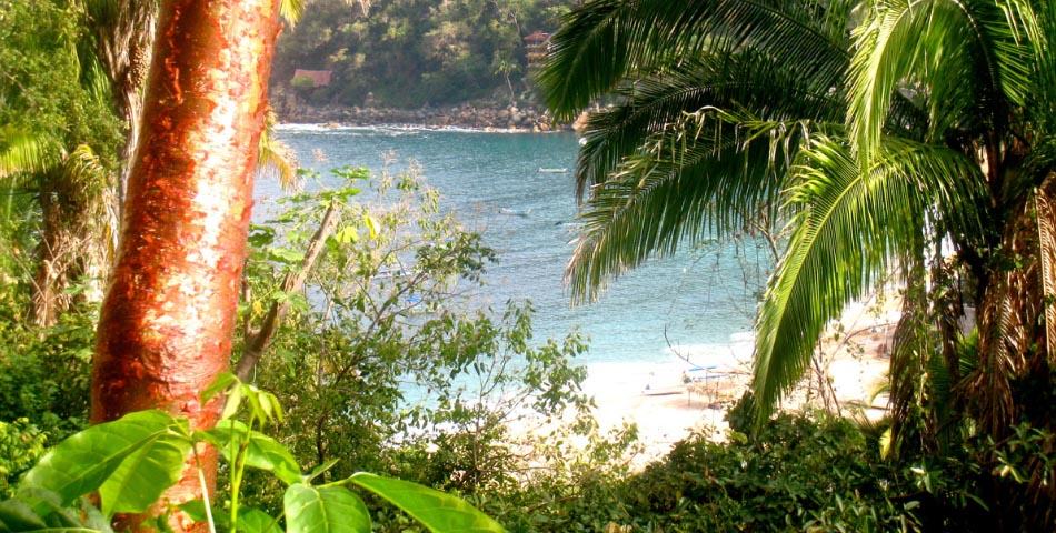 Kundalini Yoga Retreat in Yelapa, Mexico